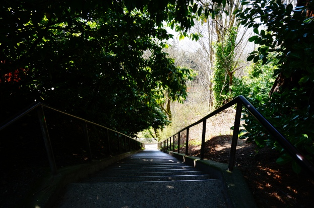 Stairway leading down to Golden Gardens Park
