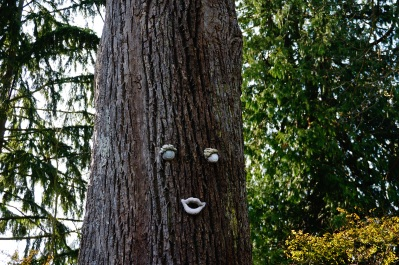 A friendly tree