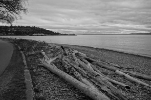 Looking south to the Fauntleroy Ferry