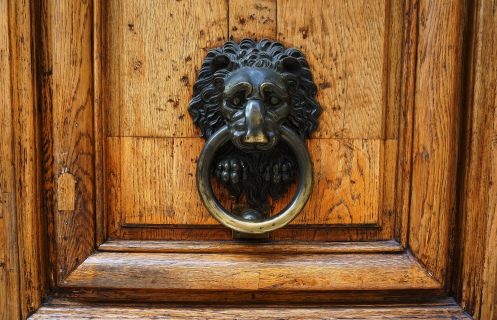 Lion's head in Paris