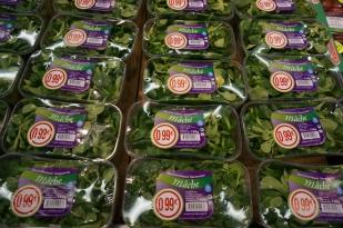 Mmmm. I love mache in my salad!
