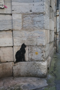 ...a black cat just crossed my path