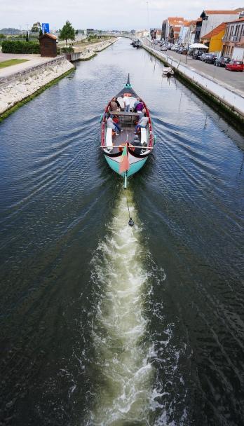 Moliceiro in Canal de Sao Roque