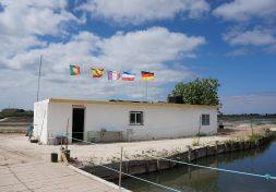 Marinha Noeirinha, sea salt artisans
