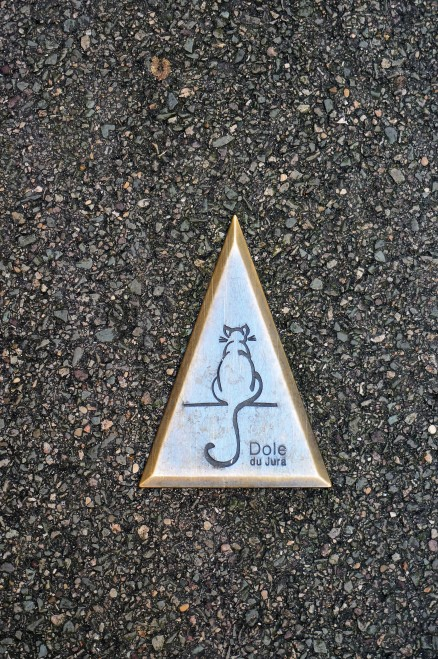 Follow the cat trail to see the best of Dole