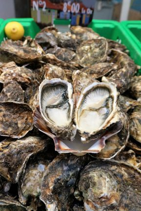 Fresh and delicious oysters from Charente