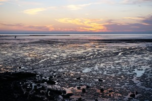 Sunset at low tide on the Charente Estuary