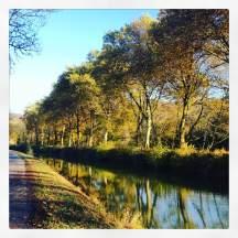 A day of sunshine along the Rhine-Rhone canal