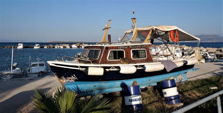 Boat-cat, Agistri