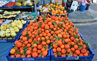 Fruit from the source of Europe's breadbasket